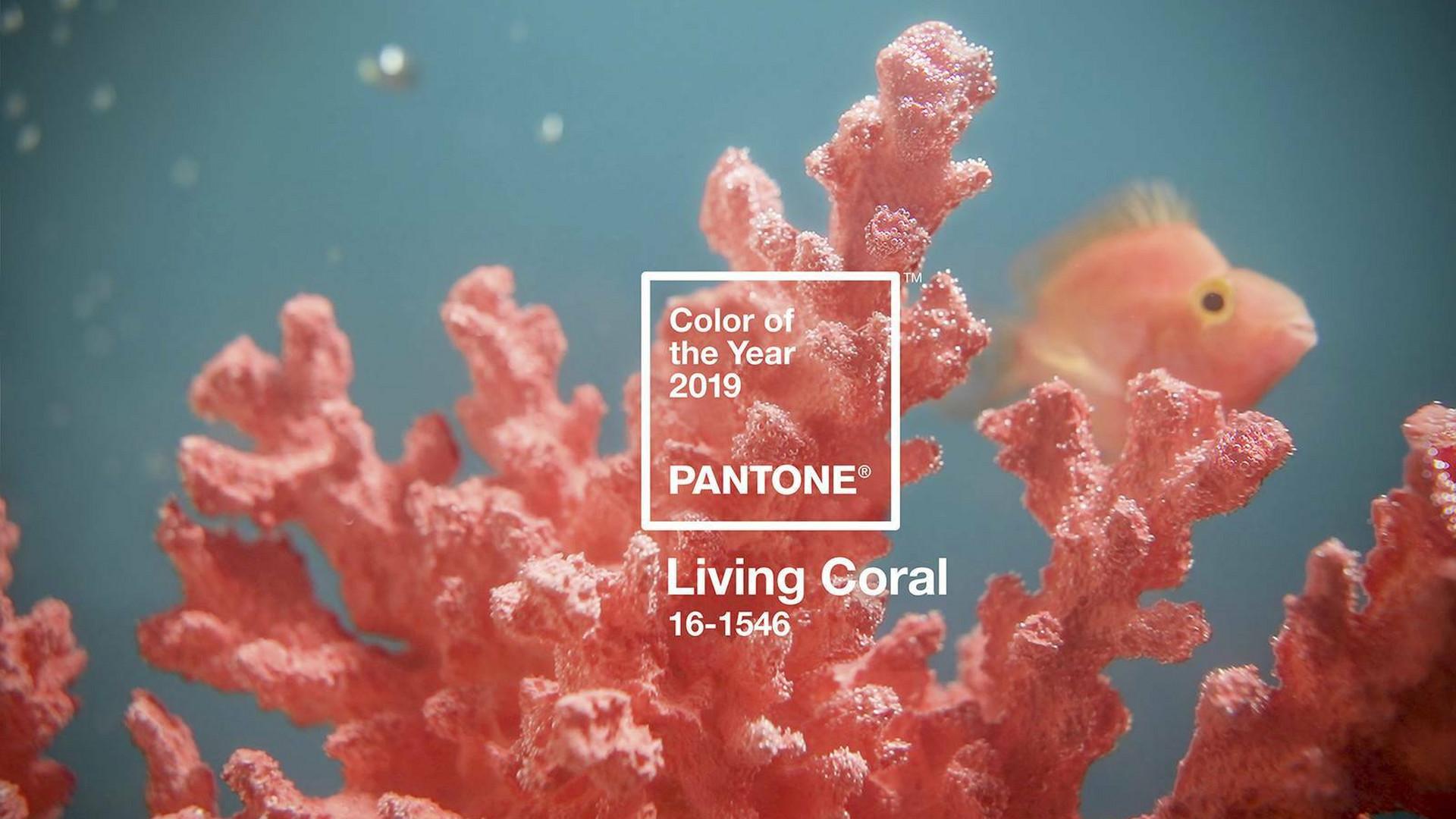 f4f68f1dcafc9f Kolor roku 2019 PANTONE to Living Coral - Noizz