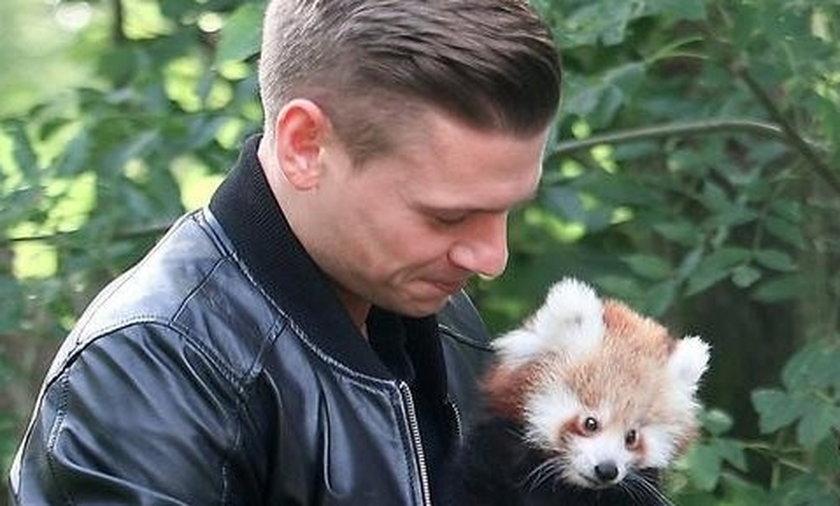 Piszczek adoptował czerwoną pandę z dortmundzkiego zoo