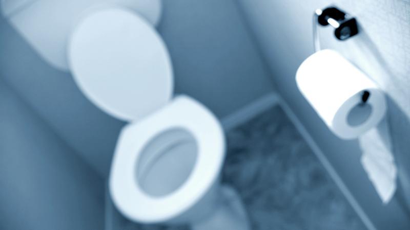 papier toaletowy, łazienka toaleta