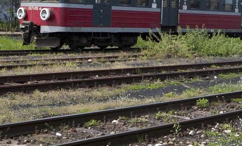 Chłopiec wpadł pod pociąg