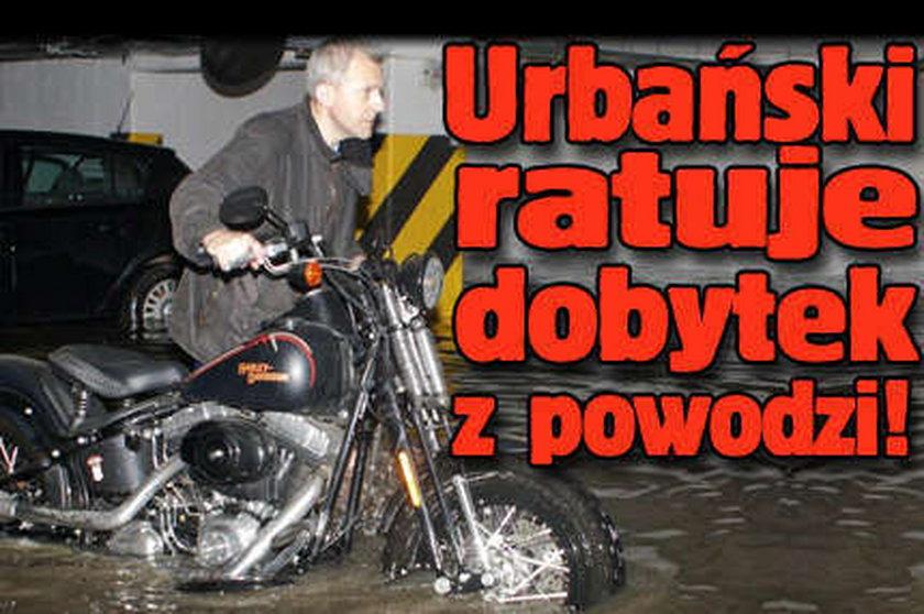 Urbański ratuje dobytek z powodzi. FOTO!