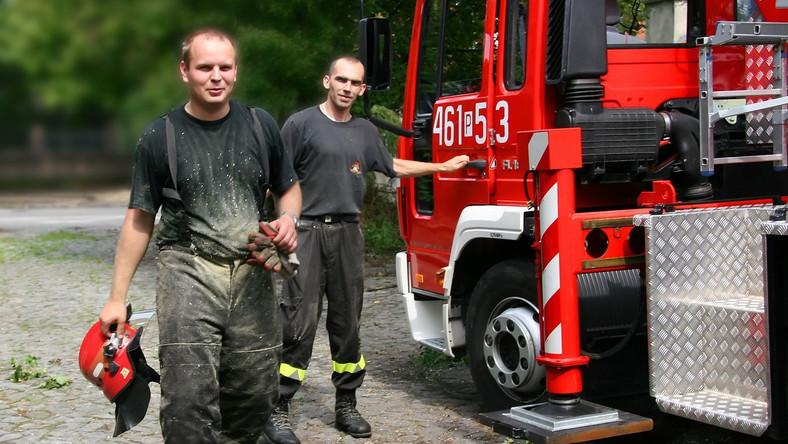 Strażacy ratują łosia