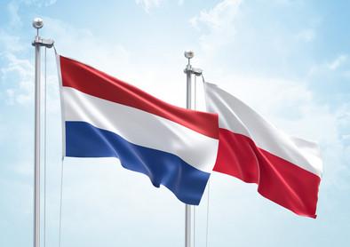 Holandii polskie strony w Tanie loty