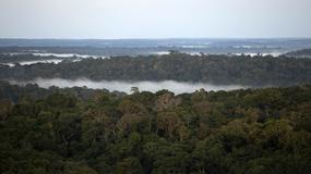 Drony nad Amazonią będą poszukiwać śladów dawnych cywilizacji