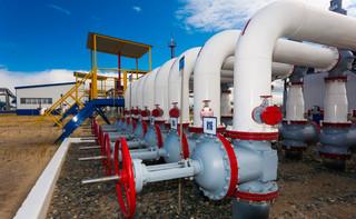 Gaz-System: W ciągu 10 lat popyt na gaz wzrośnie o 50 proc.