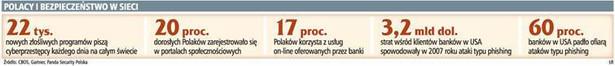 Polacy i bezpieczeństwo w sieci