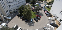 Pod gdańskimi urzędami parkingi tylko dla włodarzy