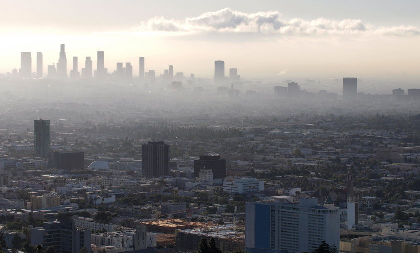 Koniec cywilizacji za 30 lat? Przerażający raport na temat klimatu
