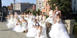 Panny młode opanowały wrocławskie autobusy!