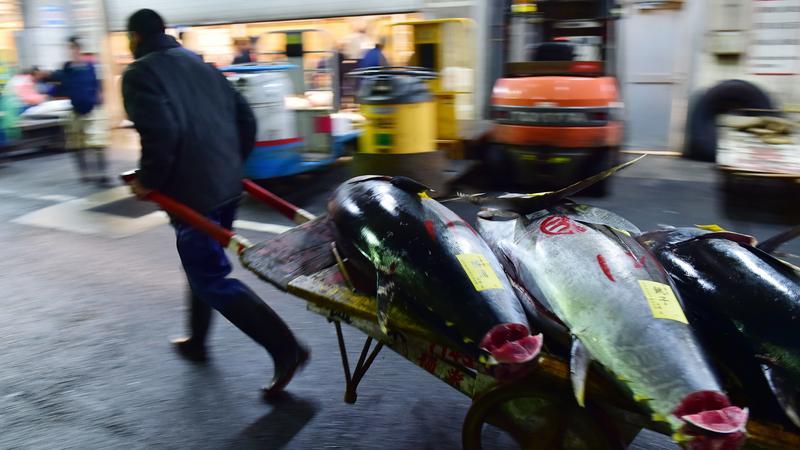 Targ rybny Tsukiji w Tokio