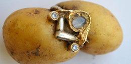 Niemiec odnalazł pierścionek w ziemniaku