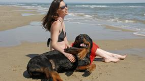 Włochy: Zadecydowali, kiedy psy mogą szczekać
