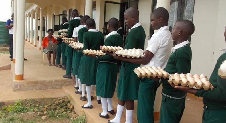 Students of Suubi Secondary and Vocational College in Lubanda, Lwengo District of Uganda, contribute to the payment of their own school fees by bringing five eggs a day to school
