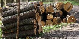 Wujek zabił 3-latka. Niechcący przygniótł go kołami ładowarki do drewna