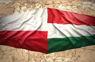 Polska i Węgry nie są pupilami USA [OPINIA]