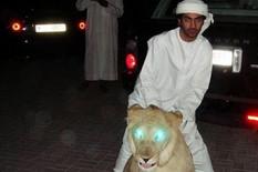 Bahati klinci Dubaija
