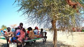 Strefa zdemilitaryzowana w Sudanie