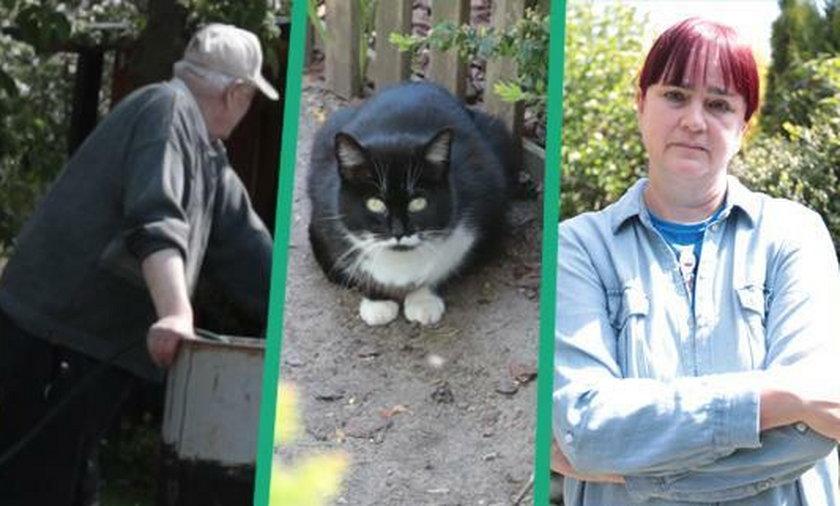 Działkowcy z Zielonej Góry toczą zażarty spór o koty. Pani Dorota dokarmia zwierzaki, ale inni działkowcy chcą się ich pozbyć