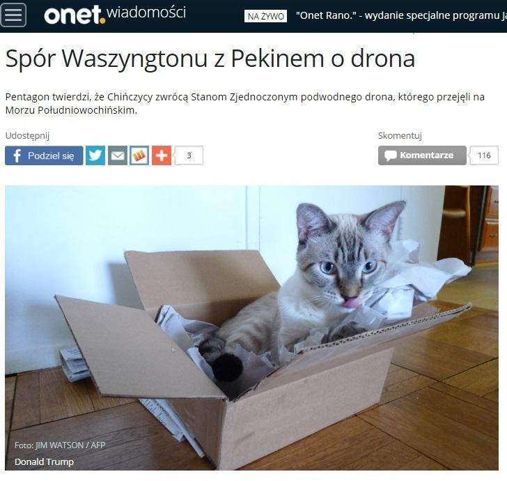 wiadomosci.onet.pl