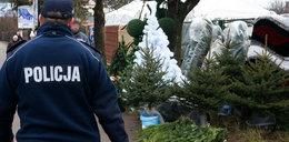 Policja i straż leśna pilnuje choinek