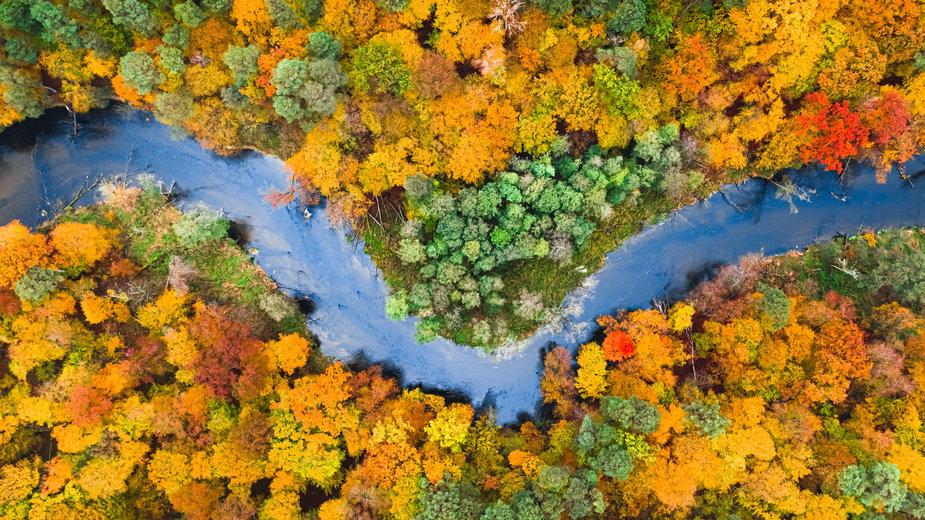 Jesień w Polsce. Dokąd warto jechać? Pomysły na jesienny urlop i weekend