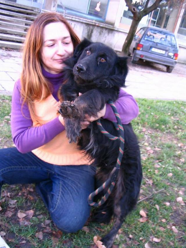 Od ponedeljka selim pse na plac u okolini Jagodine, na selu mogu da čuvam neograničeni broj pasa, kaže Jelena Vasić