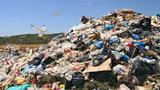 Góra śmieci rośnie. Miał być złoty interes