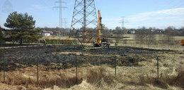 Wypalanie traw to istna plaga. Strażacy podjęli 711 interwencji