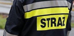 Strażacy uratowali 2-latka. Miał na głowie... sedes