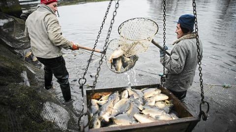 Ukraińcy znajdują pracę m.in. w rybołóstwie