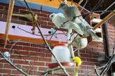 ivanjica Papagaji i druge ptice u os milinko kusic