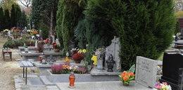 W Opolu zamkną cmentarze