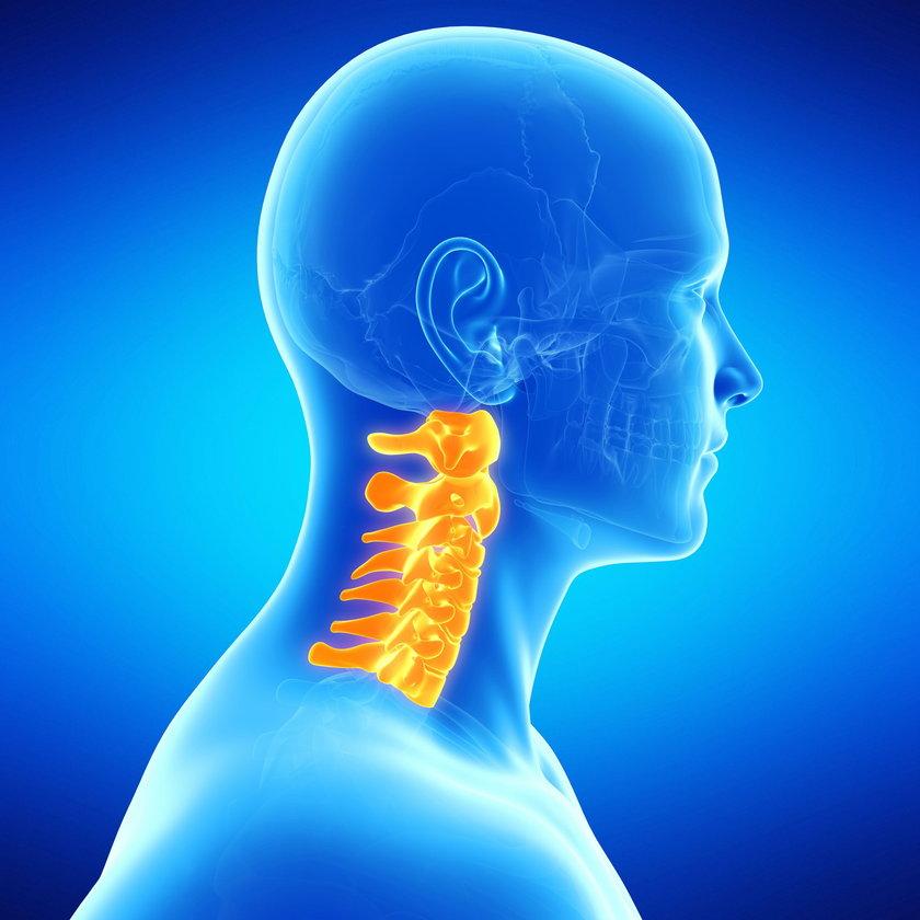 Przesunięcie czy wychylenie głowy do przodu powoduje nacisk na jeden–dwa kręgi w kręgosłupie szyjnym, a nie obciążenie wszystkich siedmiu.