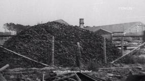 """Muzeum Stutthof: żądaliśmy zniszczenia materiału użytego w filmie """"Berek"""""""