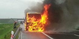 Makabra na A1. Samochód stanął w płomieniach
