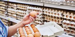 Holendrzy ostrzegają: salmonella w jajkach z Polski!