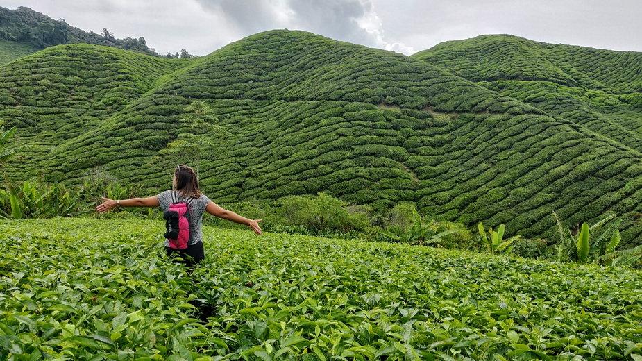 Malezja to idealny kraj na pierwszą egzotyczną podróż.