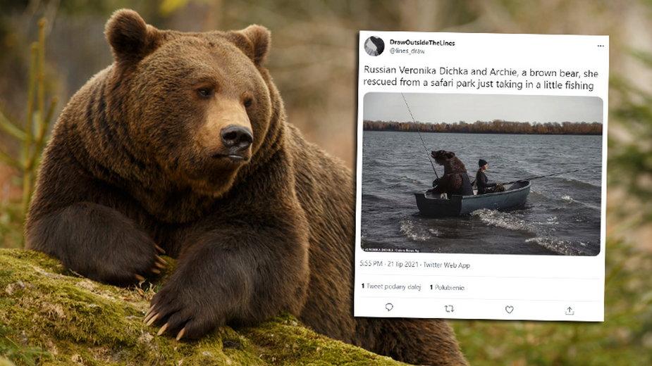 Niedźwiedź w Rosji wziął udział w komercyjnej sesji zdjęciowej