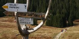 Specjalne szlaki w całej Polsce. Wytyczają je na prośbę papieża