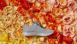 Allbirds is popular among Silicon Valley residents.