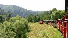 Bieszczadzka Kolejka Leśna - w wakacje pięć kursów dziennie