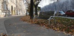 Zrobili ławkę na ścieżce rowerowej
