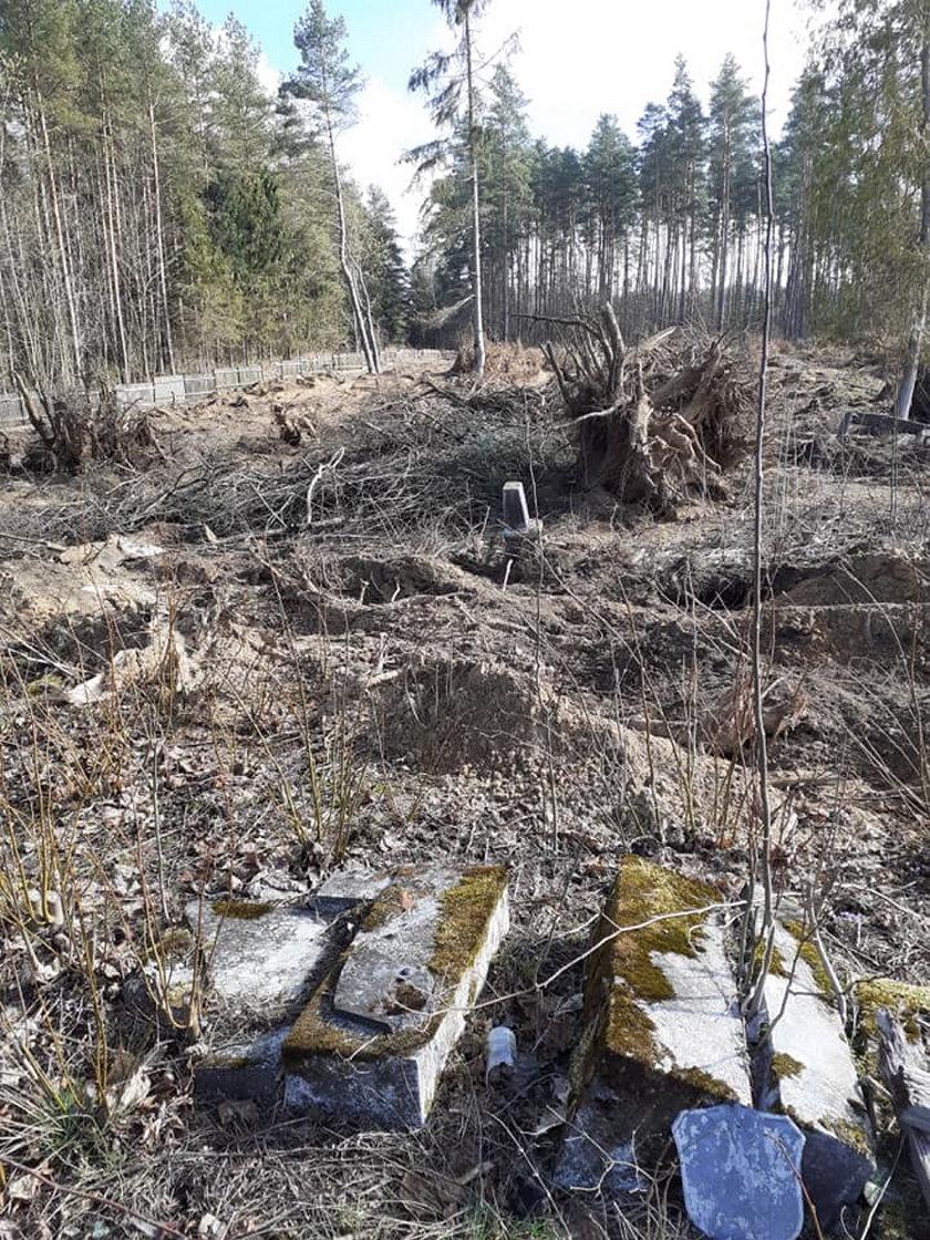 Na cmentarzu wykarczowano drzewa razem z nagrobkami. Zniszczenia dokonał proboszcz?