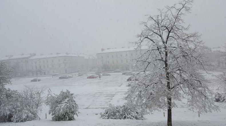 Energetycy usuwają awarie powstałe w wyniku śnieżycy