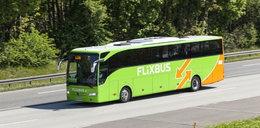 Pasażer na gapę w autobusie. Kierowcy nie wierzyli własnym oczom