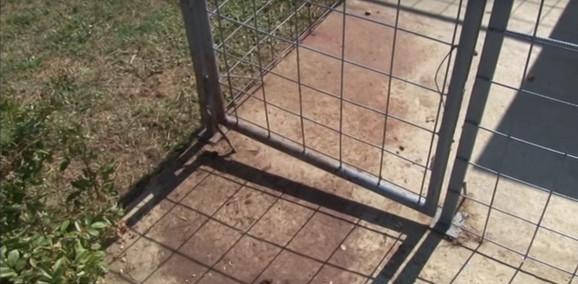 Boks iz kog je izvučen i potom ubijen pas