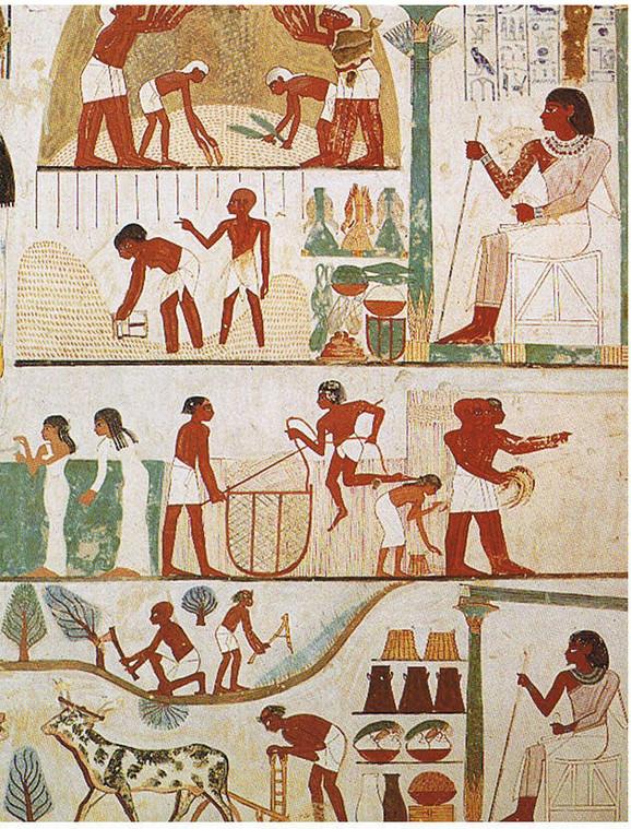 Stari Egipat: Poljoprivrednici, zanatlije, više klase...