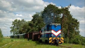 Kolej Wąskotorowa Rogów - Rawa Mazowiecka - Biała Rawska otwiera sezon turystyczny