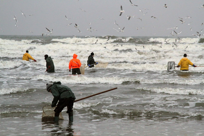 Szał połowów bursztynu nad Bałtykiem