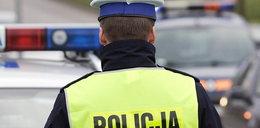 Policjanci brali łapówki. Nawet budyń,piwo i owoce